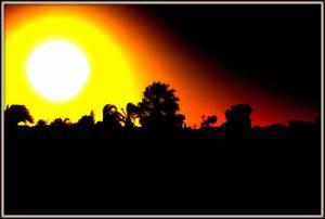 sunsetggreat